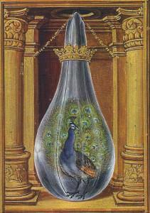 Peacock Splendor of Solis 1582